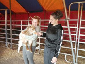 Joanna Kocka (rechts) und Jennifer Kaselowski füttern eine der Ziegen. Die Versorgung der Tiere hat für die Zirkuskünstler hohe Priorität.